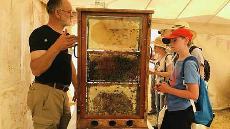 Beekeeper Paul White showing how his bees operate