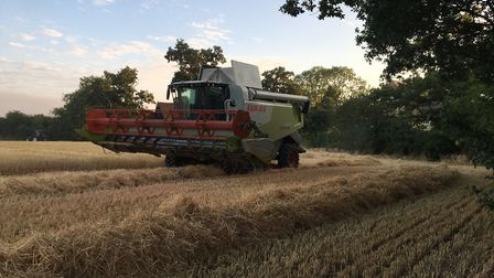 A combine harvester working in a field of wheat in Mid Suffolk during harvest 2018 Picture: SARAH CH