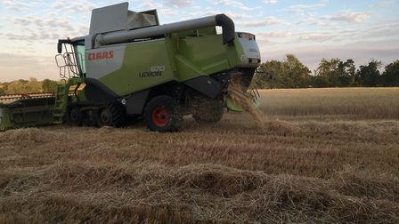A combine harvester working in a wheat crop in Mid Suffolk during harvest 2018 Picture: SARAH CHAMBE