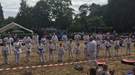 A karate demonstration at Party in the Park in Sudbury. Picture: RUSSELL COOK