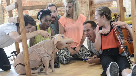 Babe, The Sheep-Pig, Colchester Mercury's summer production, in rehearsals. Photo: Robert Day
