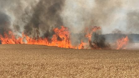 Field fire (stock image) Picture: MARK ELEY/SUFFOLK FIRE AND RESCUE SERVICE