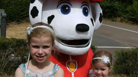 Ruby and Holly meet Marshall at Kesgrave Library Picture: LIZ DITTON