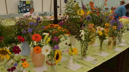 Bacton Fayre. The flower show, which is a popular part of the fayre Picture: ROB HALE