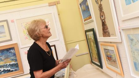 The art show is on at Trinity Methodist Church Hall until Saturday Picture: LUCY TAYLOR