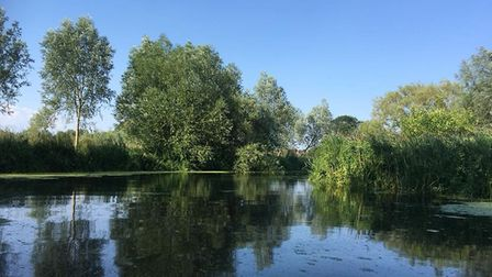A picture from a river trip from the Henny Swan to the Granary Sudbury. Picture: KAREN NAYLOR