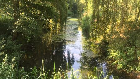 The Rive Stort, which keeps parkrunners company for a stretch of the Castle Park parkrun. Picture: C