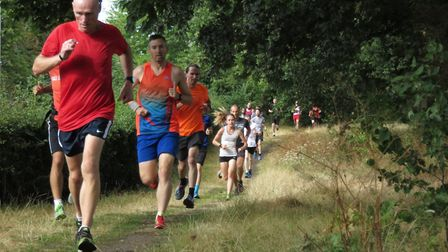 Steve Langley, on his way to fourth spot at Saturday's Ipswich parkrun. Picture: IPSWICH PARKRUN FAC