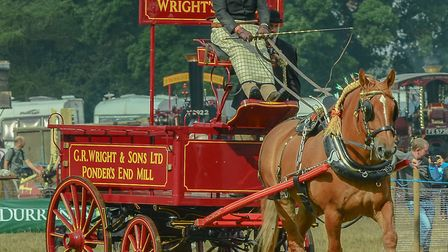Nigel Oakley will bring horse power to the Grand Henham Steam Rally Picture: HERITAGE SNAPPER