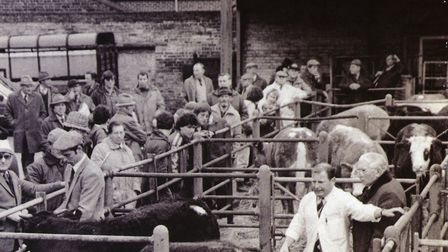 Michael Crawford is trying to preserve the history of the cattle market Picture: SUPPLIED BY MICHAEL