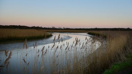 The campaign aims to protect the Alde and Ore estuary, pictured here at Snape Picture: SARAH LUCY BR