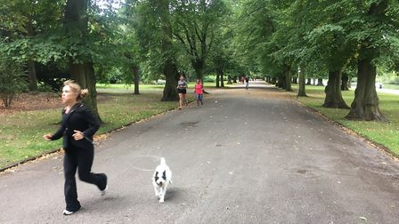 Barking mad! Owner and dog taking part in last Saturday's Barking parkrun. Picture: CARL MARSTON