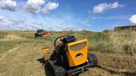 Grass cutting the sea defence structure at Hamford Water