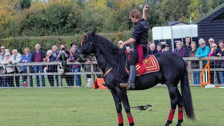 Free Spirit Horse and Falconry Credit: Countryside and Falconry Fair