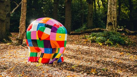 Elmer is travelling around Suffolk, visiting parks; attending community events and meeting sponsors