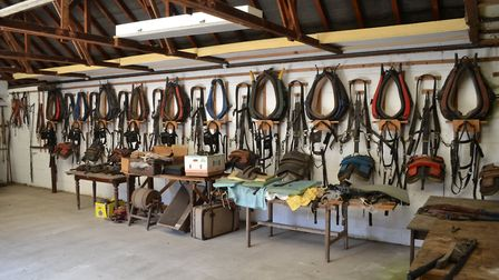 Some heavy horse equipment from the Toppesfield Museum of the Working Horse which will go on sale th