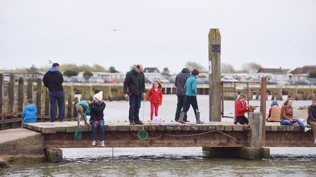 Families enjoy some crabbing in Walberswick. Picture: Sarah Lucy Brown