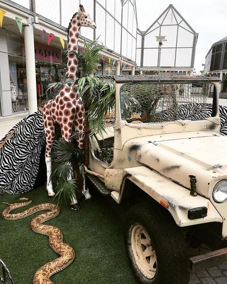 The Safari Explorers event held at the Arc Shopping Centre, in Bury St Edmunds. Picture: TOOLBOX GRO
