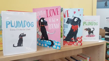 Some of the books based on Plum the dog Picture: RACHEL EDGE