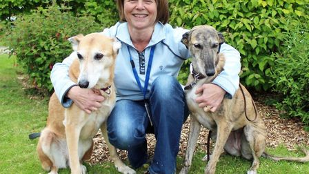Dr Cathryn Mellersh with her dogs, Libby and Tess - who could one day benefit from the same DNA test