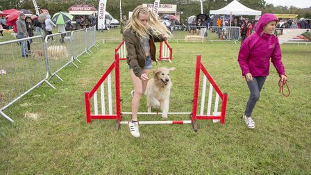 The day featured many displays and dog related fun including the agility course Picture: MARK JARVIS