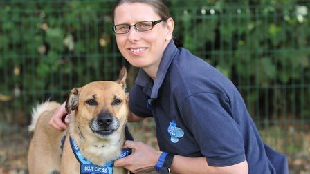 Rebecca Godfrey with Maddie who has been at the Blue Cross since April and needs a new home Picture