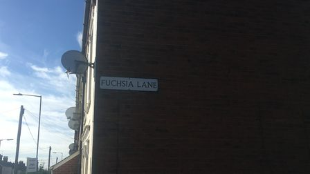 The collision occurred on Cauldwell Hall road on the the junction with Fuchsia lane Picture: ARCHAN