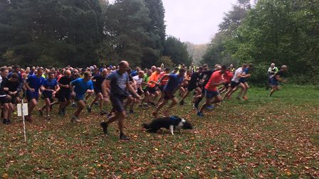 Runners, walkers and dogs set off at the start of the weekly Bury St Edmunds parkrun, held at Nowton