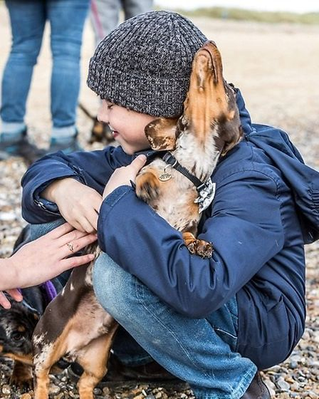 Approximately 400 Dachshunds attended the event in Southwold Picture: #SOUTHWOLDSAUSAGEWALK