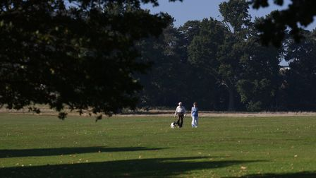 Walkers make the most of the October sunshine in Bourne Park Picture: SARAH LUCY BROWN