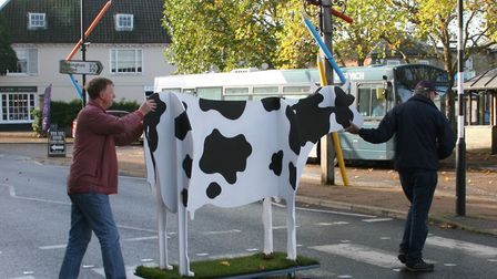 Visitors are told to 'expect the unexpected' during the festival Pictiure: WICKHAM MARKET ARTS PROJE