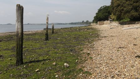 Council officers will be running an emergency drill on Shotley Beach Picture: MICK WEBB/CITIZENSIDE.