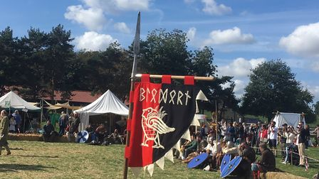 The standard of one of the Viking regiments Picture: ARCHANT