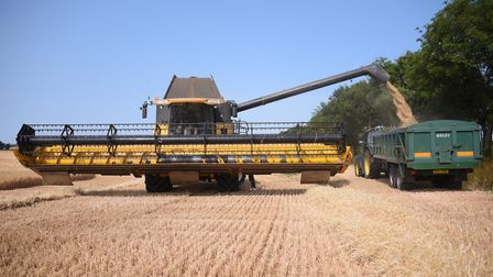 A combine harvester at work Picture: DENISE BRADLEY