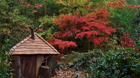 The fairy house in the woods Picture: Fiona Edmond