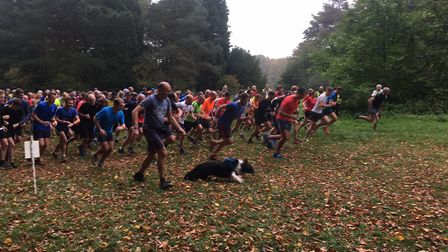 Runners, joggers, walkers and dogs get ready for the start of the Bury St Edmunds parkrun on Saturda