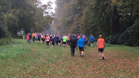Runners disappear into the distance down the promenade of trees in Nowton Park. Picture: CARL MARSTO
