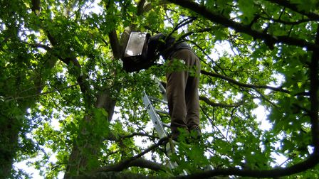 The group build and help maintain nest boxes for different owl species. Picture: SUFFOLK OWL SANCTUA
