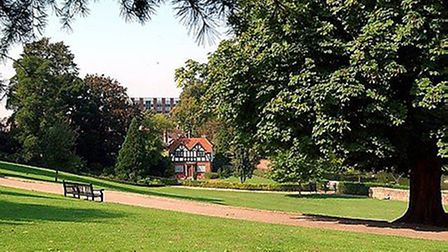 Essex Police are appealing for information following a violent attack which occurred at Castle Park