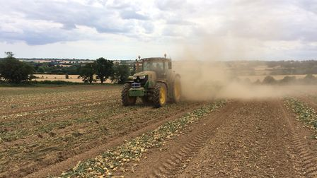 Windrowing onions amid the dust at P G Rix (Farms) Ltd, Stour Valley, in July Picture: SAM RIX
