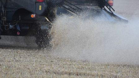 Land agents see some opportunities for farmers from the latest budget Picture: ANDREW MUTIMER