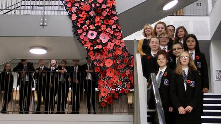 Students at Thomas Gainsborough School have created a poppy display for remembrance Picture: MARCELL