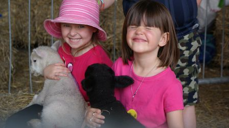 The farm will feature a range of animals for all the family to enjoy Picture: MUSEUM OF EAST ANGLIAN