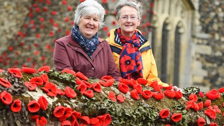 Fiona Glover and Jan Hall with last year's display Picture: GREGG BROWN