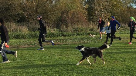 Dogs are welcome to take part in the Coldham's Common parkrun, and last Saturday was no exception. P