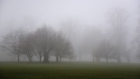 Christchurch Park in Ipswich on a foggy day. Picture: SARAH LUCY BROWN