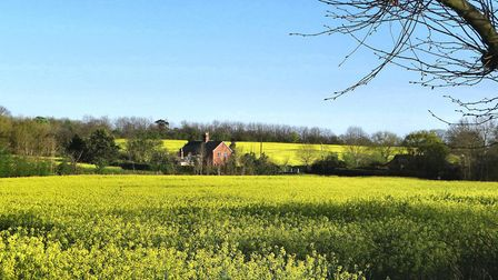 It is hoped Conservation Area status for Kelsale will preserve the village's character PIcture: PHIL
