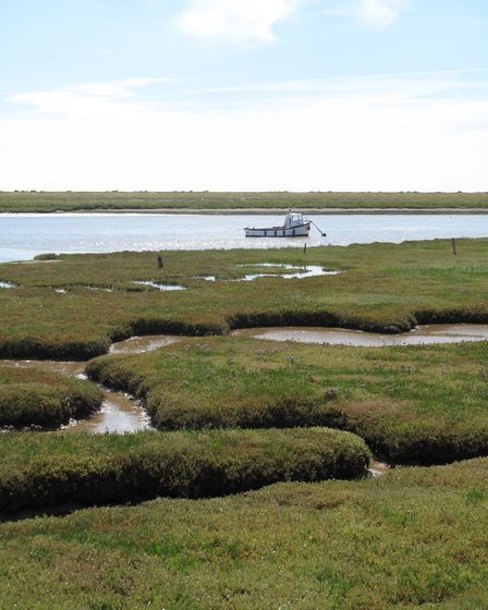 The saltmarshes of the island are in the Alde Ore estuary. Picture: RSPB