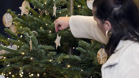 East of England Co-op Funeral Services, Tree to Remember, will be at Christmas concerts and services