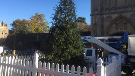 Has the Angel Hill Christmas tree shrunk? Picture: CHRISTINE DAY